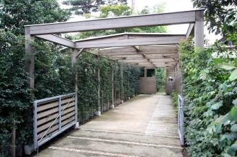 アプローチ。生垣と木塀による屋根付きのアプローチ。