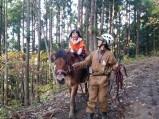馬乗り体験