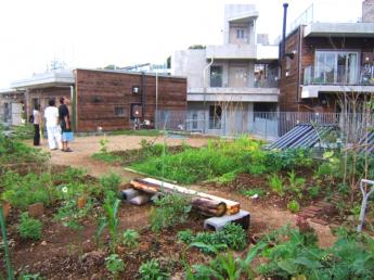 太陽熱温水器も設置された屋上菜園