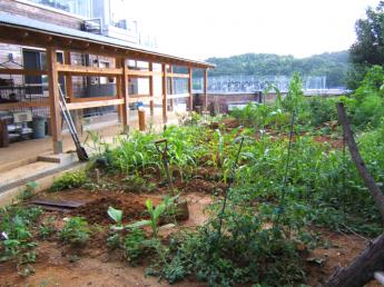 実り豊かな菜園