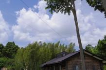 焼杉外壁の平屋建て木造住宅