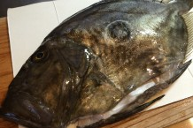 マトウ鯛調理前