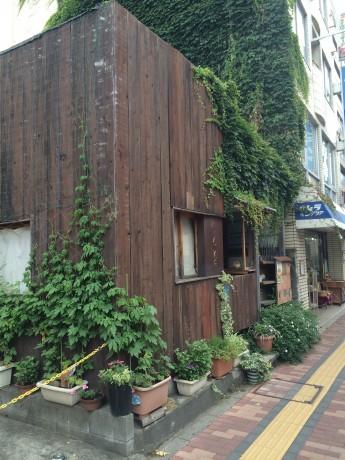 緑で覆われた小さなカフェ