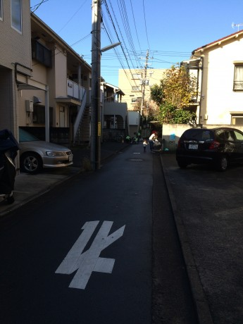 近所の道を大掃除