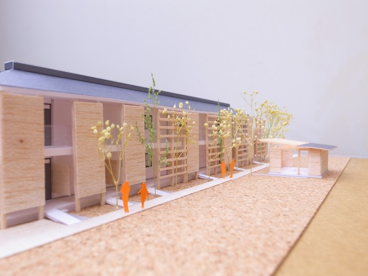 菜園から建物を見る